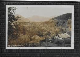 AK 0353  Steinbachbrücke ( Grünau ) - Partie Um 1920-30 - Traun