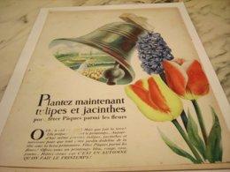 ANCIENNE  PUBLICITE PLANTEZ TULIPES ET JACINTHES  1952 - Publicité