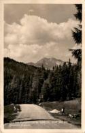 Auf Der Katschberghöhe - Blick Auf Die Niederen Tauern * 26. 5. 1954 - St. Michael Im Lungau