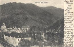 CPA Roumanie Parcul Din Sinaia - Roemenië