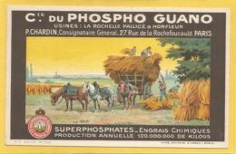17 - Charente Maritime - La Rochelle - Cie Du Phospho Guano Usines : La Rochelle Pallice & Honfleur - Engrais Chiliques - La Rochelle