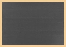 100x KOBRA-Einsteckkarten, Grau Rückseite Nr. K3G - Classificatori