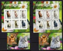 2 MNH Series - Animals - Cats - Second-hand And With Teeth - 2019 - Gambia - Domestic Cats