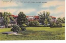 ETATS UNIS(KANSAS) ARBRE - Kansas City – Missouri
