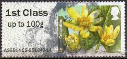 GREAT BRITAIN 2014 Post & Go: Spring Blooms. Lesser Celandine - Post & Go (distribuidores)