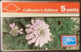 Telefonkarte Gibraltar - Candytuft  - 302A - Gibraltar