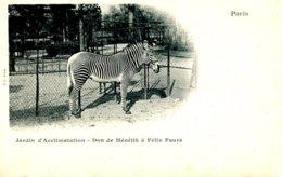 75016 .20472 .paris .jardin D Acclimatation .don De Menelik A Felix Faure .zebre . - Parcs, Jardins