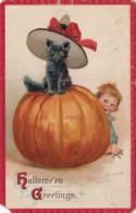Hallowe'en Greetings, 1914; Boy, Large Pumpkin & Black Cat Wearing A Hat - Halloween