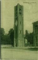ROBECCO D'OGLIO ( CREMONA ) TORRE - EDIT. A. CADEL - 1923 ( 3645 ) - Cremona