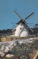 Postcard Mostert's Mill Mowbray Cape South Africa [ Windmill Interest ] My Ref  B23861 - Windmills