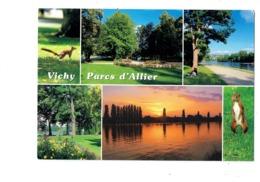 Cpm - 03 - VICHY - Parcs D'Allier - écureuil - Debaisieux - Vichy