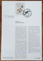 FDC Sur Document - YT N°2767 - NATURE DE FRANCE / FLEURS DES ZONES HUMIDES - 1992 - 1990-1999