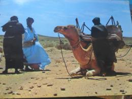 Sahara Español - Sahara Occidental