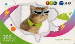 TAILANDIA. GATO - CAT - CHAT. Cat With Sunglasses. 06/2008. TH-12Call-1174. (001) - Gatos