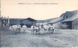 91 - NOZAY : Intérieur De La Ferme De VILLARCEAU ( Troupeau De Vaches ) CPA Village ( 4.700 Habitants ) - Essonne - France