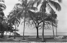 AFRIQUE NOIRE - GUINEE Conakry : La Coniche Et L'Ile De Kassa - CPSM Dentelée Noir Et Blanc Format CPA - Africa - Guinée Française
