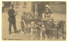 A0093[Postkaart] Vlaamsche Melkvrouw. (Nels, Thill) [Feldpost Vlaamse Laitière Flamande Hondenkar Attelage Chiens] - Fliegende Händler