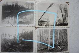 Photox4 COURT SAINT ETIENNE GENAPPE Ry D'Hez Tornade 1934 Arbres Arrachés Vieille Maison - Lieux