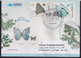 "Argentina - 2017 - Lettre - FDC - Papillons - ""Frotadora Comun"" - ""Bandera Argentina"" - Schmetterlinge"