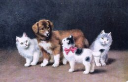 Unknown Artist -  Three Kittens Are Gathered Around A Slightly Astonished Puppy. - Katten