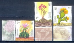 O60- UKRAINE 2014 CACTI CACTUSES AND SUCCULENTS. - Other