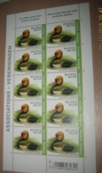 BUZIN 4759** Krooneend / Oiseaux - Vogels - Birds - Nette Rousse** Pl 2 - 1985-.. Birds (Buzin)