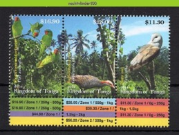 Nfk001 FAUNA VOGELS UIL PAPEGAAI RAL LORIKEET PARROT RAIL OWL EULE VÖGEL AVES OISEAUX TONGA 2014 PF/MNH - Collections, Lots & Series