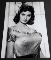 SOPHIA LOREN # Sexy Portrait # Großes Star-Photo, Ca. 13 X 18 Cm # [19-4569] - Fotos