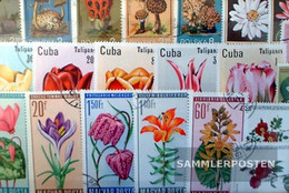 Motives 100 Different Flowers And Plants Stamps - Plants