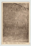 Egypt - Vintage Post Card - Sakkara - Giza - Aegyptologie