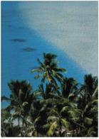 Carte Postale Tahiti Bord Du Lagon Trés Beau Plan - Tahiti