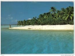 Carte Postale Tahiti  Un îlot Corallien  Trés Beau Plan - Tahiti