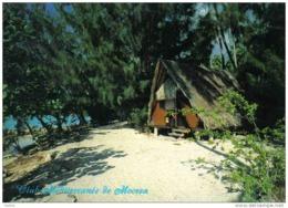 Carte Postale Polynésie Française Tahiti Club Méditerranée  Trés Beau Plan - Tahiti