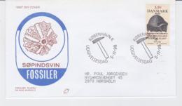 Denmark FDC 1998 Fossils (G104-31) - FDC