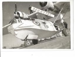 PHOTO AVION LATECOERE 611 ARCHENAR F.28 HYDRAVION 12X8CM  ARCHIVE ECPA - Aviation