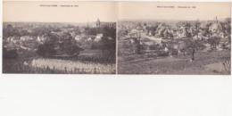 DOUBLE CARTE / 02 - VAILLY-sur-AISNE - Panorama En 1914 Et En 1920 - Altri Comuni