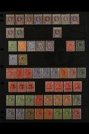 1902-1951 MINT COLLECTION  On Stock Pages, Includes 1902 Set To 6d & 2s, 1904-11 2½d, 1907-08 Set (ex 1d), 1921-32 Most  - St.Vincent (...-1979)