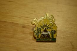 Rare Pin's Johnny Hallyday Wild West - Pin's