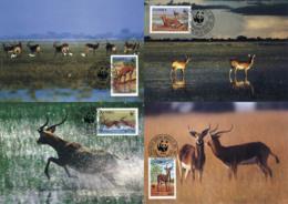 Ref. 7556 * NEW *  - ZAMBIA . 1987. BLACK LECHWE. LECHWE NEGRO - Zambia (1965-...)