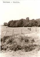 Horrues : Molen--moulin  ( Fotokaart) - Belgique