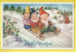 * Fantaisie - Fantasy - Fantasie * (53567) Bonne Année, New Year, Lapin, Rabbit, Gnome, Kabouter, Dwarf, Lutin, Traineau - Nouvel An