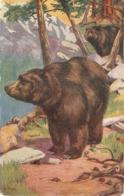 """B.Butler. Wild Animals"" Lot Of Four (4)Tuck Oilette Wild Animals Ser PC # 3001 - Tuck, Raphael"