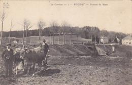 Bugeat - Ave. Du Viam            (A-126-170706) - Francia