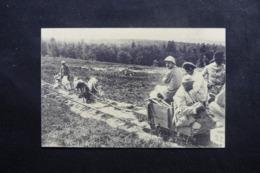 MILITARIA - Carte Postale - Attelage De Chiens Tirant Un Wagonnet Sur Une Petite Ligne Avec Militaires - L 46084 - Personajes