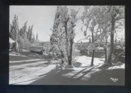 *Vinter I Norge* Circulada Sarpsborg 1964. - Noruega