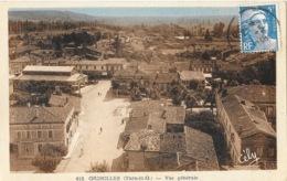 Grisolles (Tarn Et Garonne) Vue Générale Prise Du Clocher De L'Eglise - Collection Labrune, Carte Cely N° 616 - Grisolles