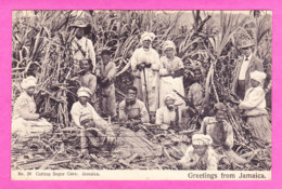 E-Jamaique-01P67  Coupeurs De Cane à Sucre (cutting Sugar Cane), Belle Animation, Cpa BE - Jamaica