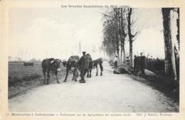 Route De Montauban à Lafrançaise: Enlèvement Des Animaux Noyés (Grandes Inondations Du Midi 1930) Carte N° 18 - France