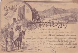 251529Gruss Vom Drachenfels Am Rhein. (Poststempel 1894) (sehe Ecken Und Kanten) - Drachenfels