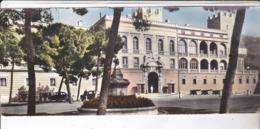 CPM PANORAMIQUE MONACO PALAIS PRINCIER - Palais Princier